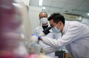 Китай, Коронавирус, Пандемия, Ученые, Антитела, Лекарство