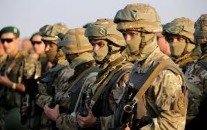 Финляндия, НАТО, военное обозрение, учения, политика, Россия