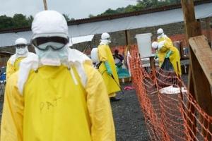 лихорадка Эболы, общество, ВОЗ, медицина, Западная Африка