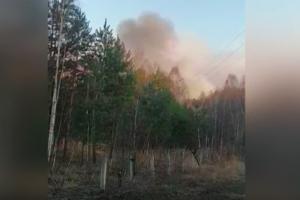 чернобыль, пожар, украина, поджиг, лес, ГСЧС, фирсов