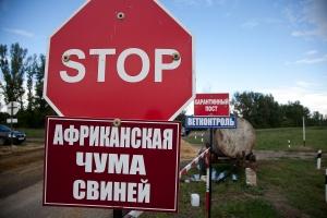 Крым, новости Украины, аннексия, Россия, эпидемия