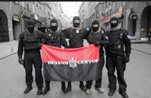 правый сектор, пикет, украина, правительство, общество