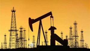 опек, нефть, политика, цена на нефть