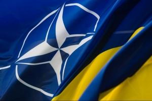 нато, украина, украина нато, одесса, новости украины, евросоюз, новости одессы, ирина фриз, фриз, рада, вру, парлмент украины, вступление украины в НАТО