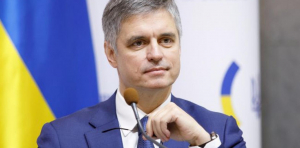 Выборы, Местные, Пристайко, МИД, ОРДЛО, Боевики.