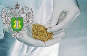 росссельхознадзор, алексей алексеенко, украина, россия