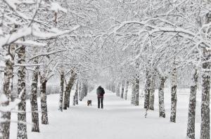 Украина,  погода, прогноз, температура, области, холод, снег
