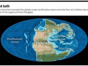 наука и техника, ученые, сибирь, сибирские вулканы, выброс газов, вымирание живых организмов, 250 млн лет назад