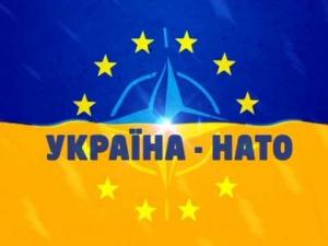 Украина, членство в НАТО, Грузия, политика, общество, ПА НАТО, Россия, Путин, паника, БПП, Рада