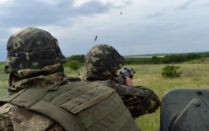 Порошенко, АТО, Нацгвардия, Украина, Донбасс, юго-восток, ДНР, ЛНР, Луганск, Донецк