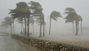 ураган, Ирма, Флорида, США, стихийное бедствие, катастрофа, циклон, эвакуация, новости сша, население флориды, население сша, Вильфанд, фото урагана ирма, ураган ирма, санкт-петербург, россия,