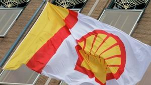юго-восток Украины, сланцевый газ, компания Shell, Донбасс, АТО, Донецкая область, Харьковская область