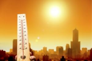 европа, климат, погода, природные катастрофы, жара, исследования, парниковые газы, гибель, смерти, человечество