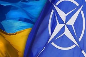 НАТО, Украина, учения, сержанты, Львов, армия Украины, ВСУ