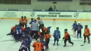 драка, хоккей, украина, беларусь, пинск