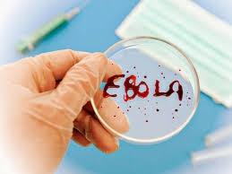 лихорадка эбола, общество. происшествия