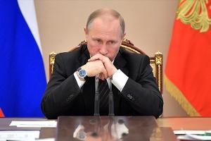 "Крым, Аннексия, Путин, ""Артек"""