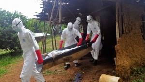 лихорадка эбола, новости мира, медицина, происшествия