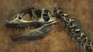 новости науки, монстры, динозавры, антарктида, вечная мерзлота, эласмозавры, археология