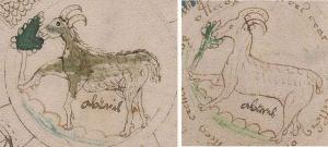 Джерард Чешир, манускрипт, загадки прошлого, Войнич, криптографы, послание инопланетян