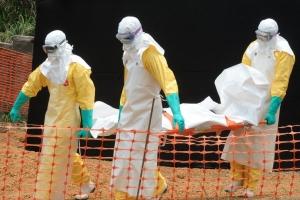 Эбола, общество, США, мир