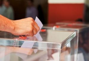новости украины, местные выборы - 2015, мвд украины, общество