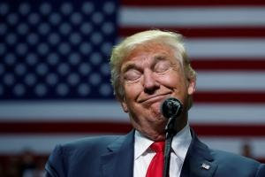 трамп, путин, песков, политика, крепкий орешек, высказывание, английский язык, образ