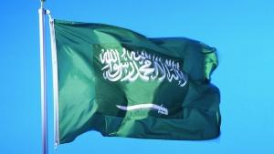 саудовская аравия, экономика, украина, павленко, системы орошения