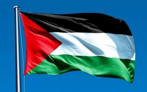 Палестина, Крым, рефернедум, Россия, Украина, новости, МИД,заявление, происшествия
