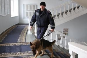 винница, новости украины, мвд украины, общество