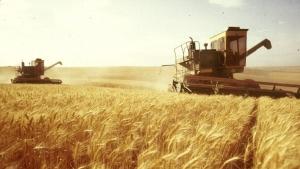 Новости Украины, агропромышленность в украине, экономика,