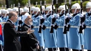 турция, иран, эрдоган, хасани, политика