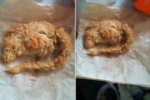 KFC, крыса, еда, ресторан