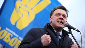 украина, политика, кремль, новости, аваков, мвд, партия свобода, тягнибок, общество, граната, верховная рада