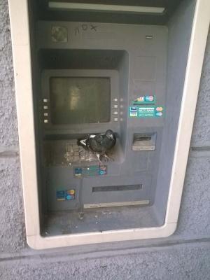 банкоматы, пластиковые карты, банковская система, лнр, луганск, донбасс, терроризм, фото, новости украины