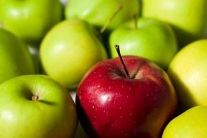 Польша, США, яблоки,закупки, запрет