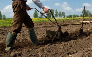 Фермеры, Европа, Россия, рынки, эмбарго, альтернатива
