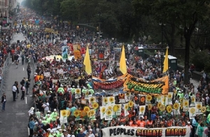 нью-йорк, эко-активисты