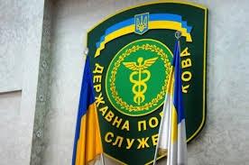 яценюк, кабинет министров, политика, общество, происшествия, новости украины