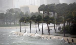 """Ураган """"Макс"""", Мексика, США, Стихия, Природные катастрофы"""