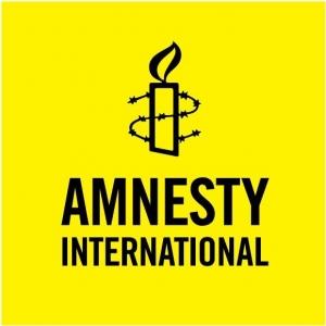 Amnesty International, Украина, Татьяна Мазур, майдан, судебная система, расследование