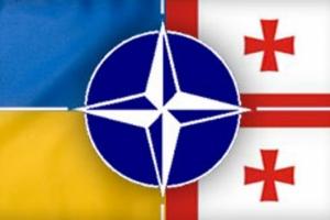 грузия, украина, нато, сша, армия россии, донбасс, политика, россия, новости украины, новости грузии, абхазия, южная осетия, луганск, донецк