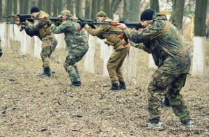 батальон сеч, перемирие, россия, украина