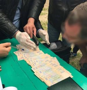 Аваков, криминал, коррупция, взятка, Днепропетровская область
