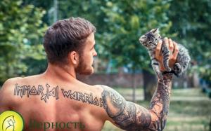 красивые парни позируют с котятами. зоозащитники Днепра, фотосессия с животными