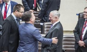 Украина, США, НАТО, политика, общество, Мэттис, Полторак, встреча на уровне министров обороны