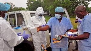 медицина, общество, происшествия, лихорадка эбола, воз, либерия, сьерра-леоне