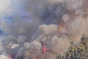 украина, чернобыль, пожар, радиация, зона отчуждения, мвд