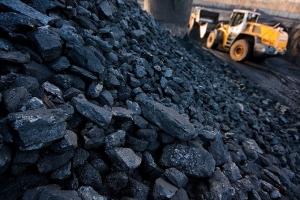 российский уголь ,украинские тэс, украина, рф, экономика, Центрэнерго, Оксана Егорова