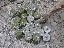 минная война, министерство обороны, ополченцы, мины
